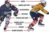 Выбор хоккейных щитков